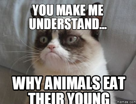 You make me understand... why animals eat their young