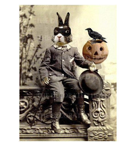 halloween decor beau bunny rabbit bandito anthropomorphic art print raven crow decorations pumpkin 5x7 inch the decorated house