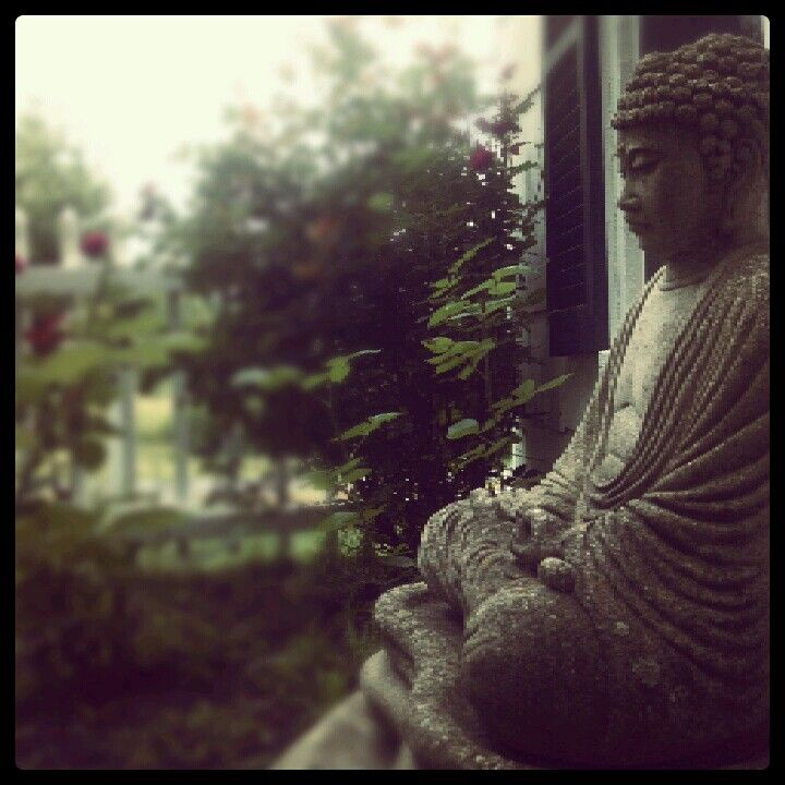 Buddha garden.// Catilin Feldner