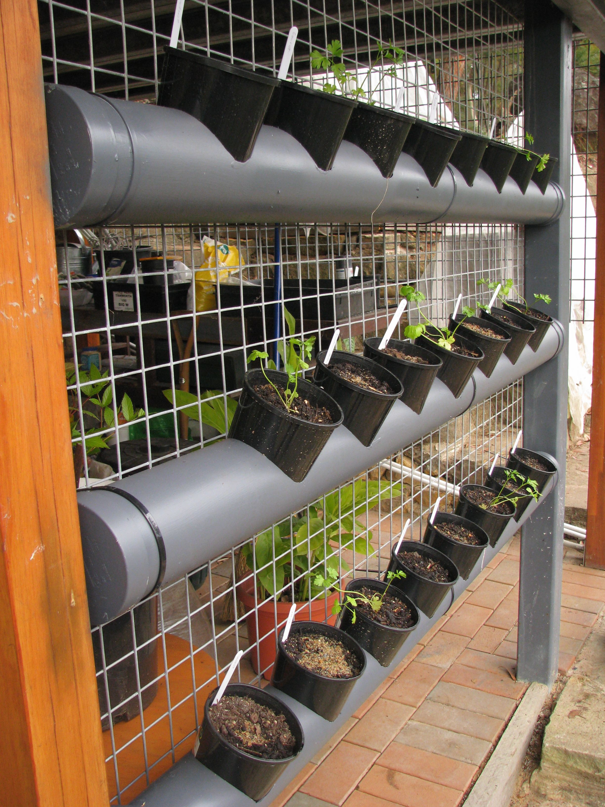 growing with patio vegetable on ideas small and spaces the vertical trellis baskets wall mounted or wire it plants indoor for garden deck