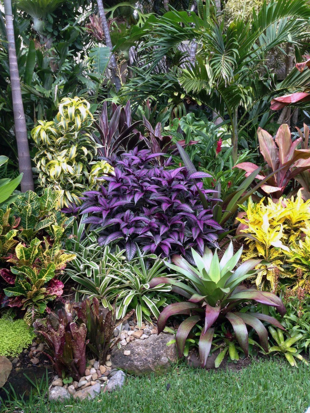 71 Beautiful Tropical Backyard Landscaping Design