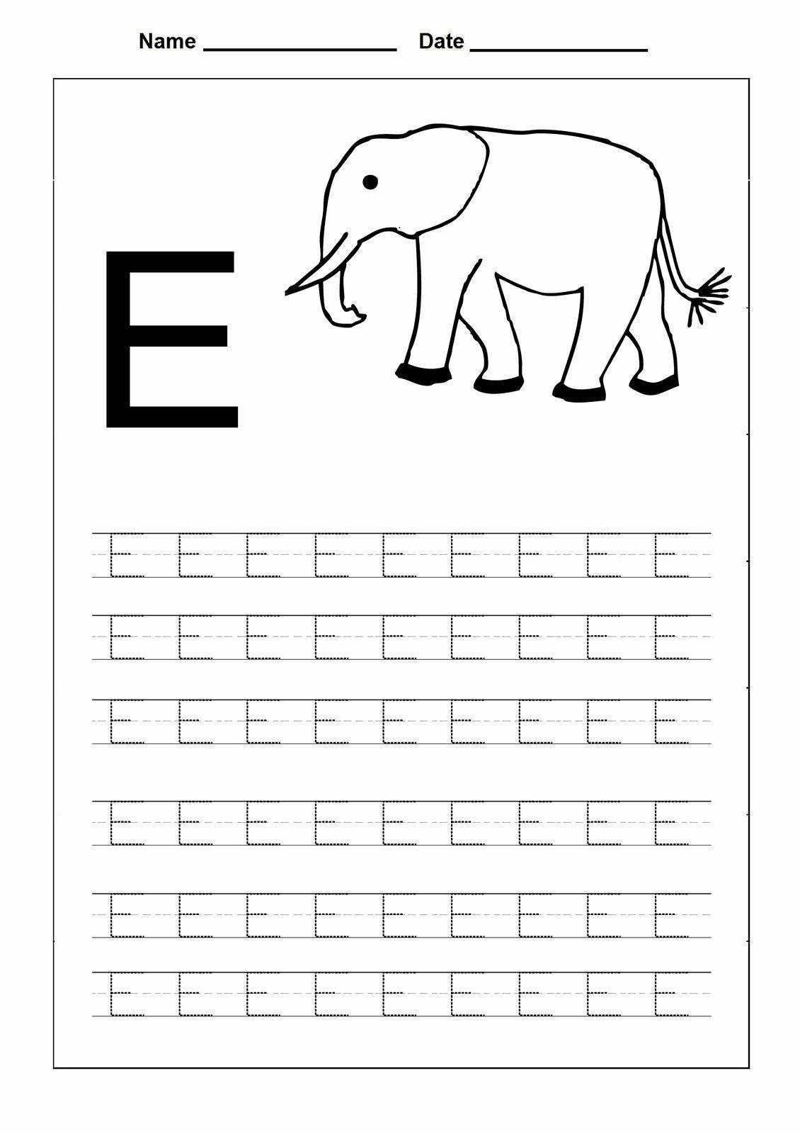 6 Tracing Letter P Pig Worksheets First Grade Alphabet