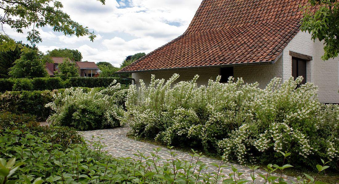 Landelijke Tuinen Ontwerpen Tuin Landelijke Stijl Tuinarchitect
