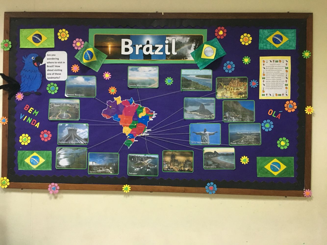 Studying Brazil In Ks2 This Is The Board Outside My