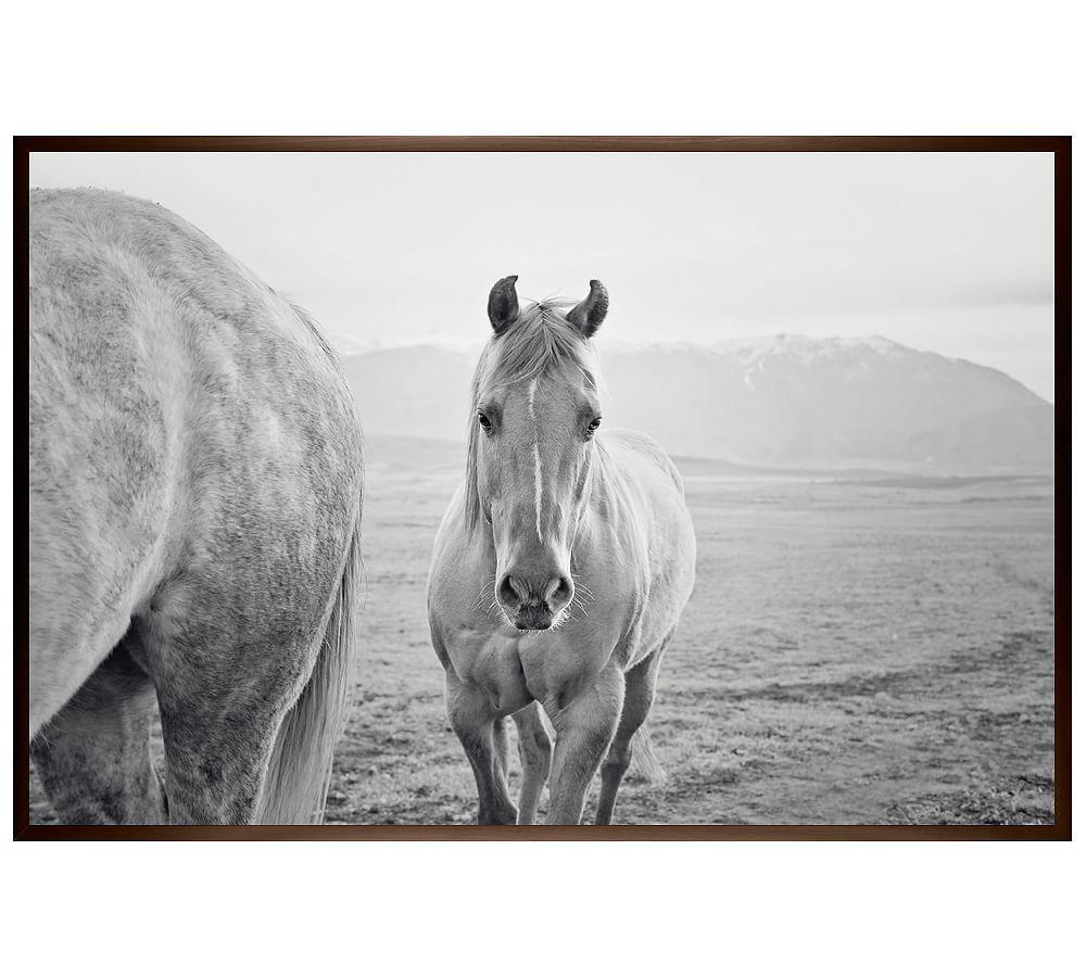 Cute western horse jennifer meyers 28x42 ridged distressed