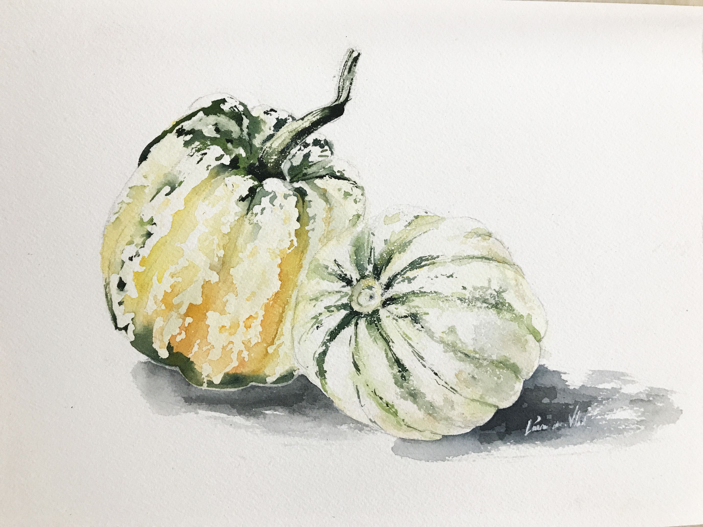 Realistic Watercolor Squash Painting Tutorial From Oceanspice