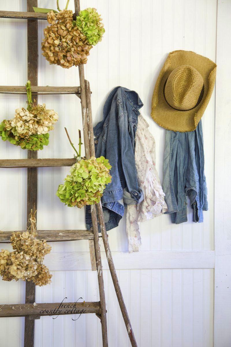 Hydrangeas Simple Autumn vignette in 2019  DIY Home
