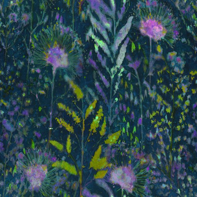 Dandelion Rmk11370rl York Peel Stick Wallpaper Warehouse Peel And Stick Wallpaper Wallpaper Pink And Blue Wallpaper Roll