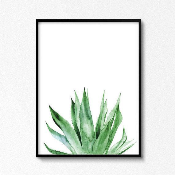 Watercolor Plants Agave Agave Print Tropical Print Watercolor Illustration   DIY  Aquarell Painting