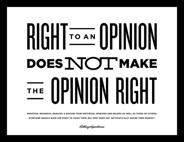 Right To An Opinion Does Not Make The Opinion Right Opinion Quotes Business Quotes Funny Be Yourself Quotes