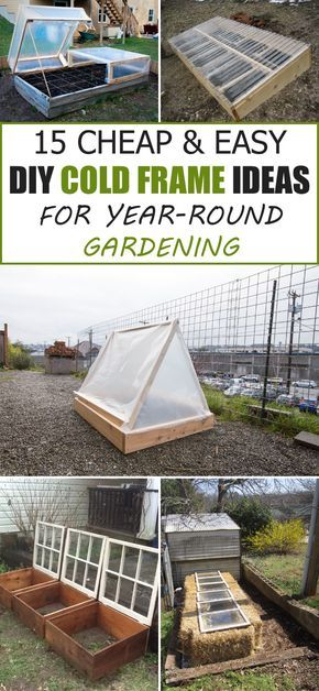 15 Cheap & Easy DIY Cold Frame Ideas for Year-Round Gardening   Cold ...