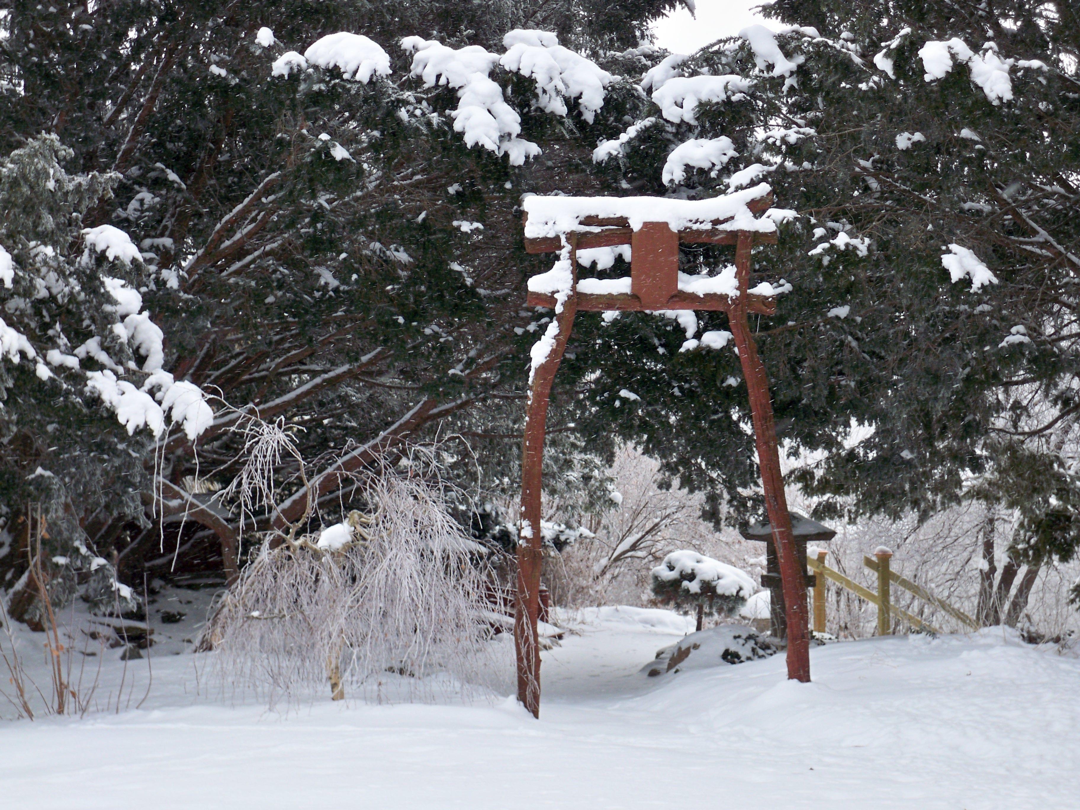 muscatine art center japanese garden muscatine iowa japanese