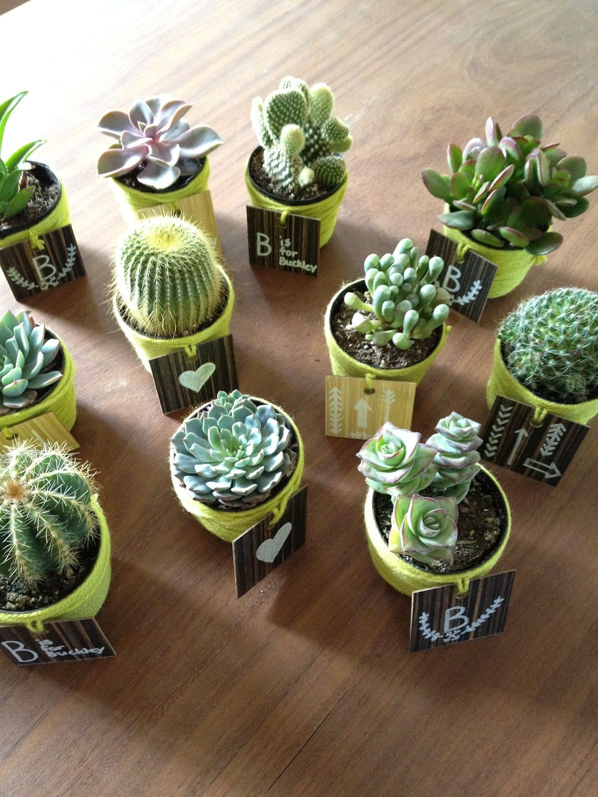 TAW diy party favors would be cute for western theme shower ...