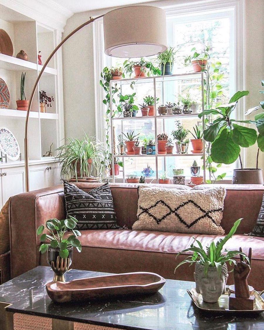 Plant Shelf In Front Of Windows Shelf Lamp Decor Plant Shelves