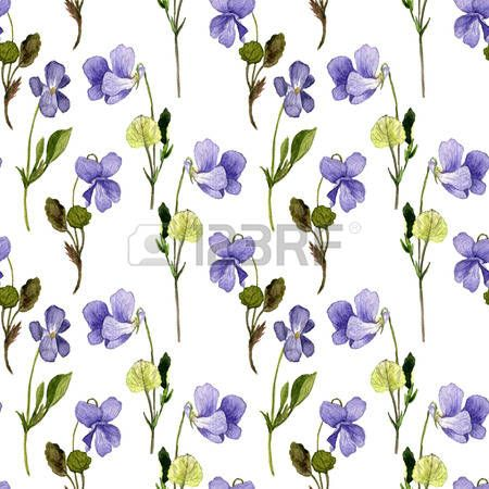 dessin de fleurs sauvages bleu des plantes de violettes. Black Bedroom Furniture Sets. Home Design Ideas