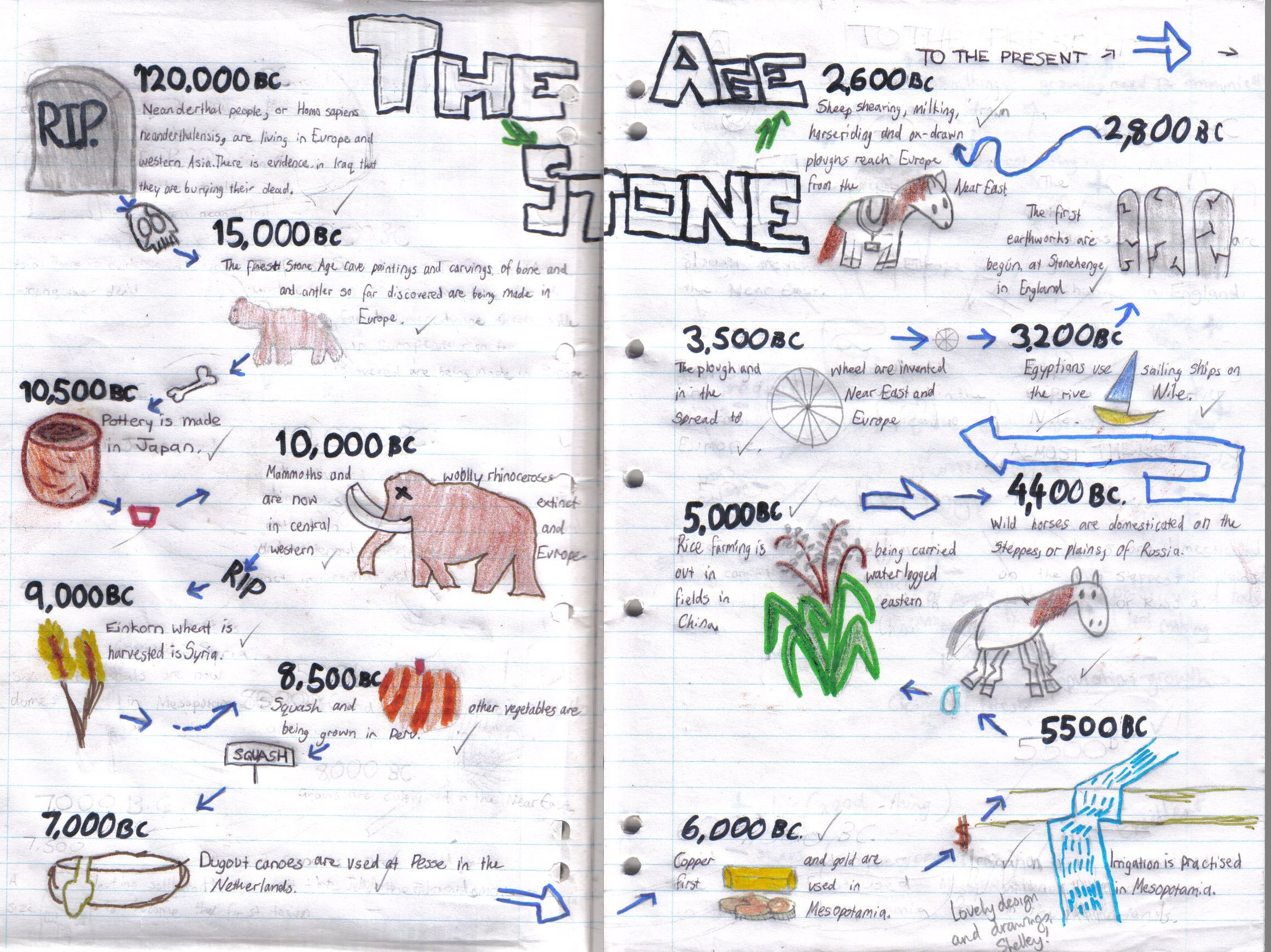 Shelley X Timeline Stone Age  Copy  HistoryTimelines