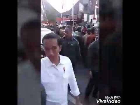 Pua videos