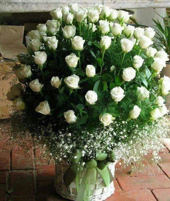 Ramo De Rosas Blancas Flores Rosas Blancas Arreglos De