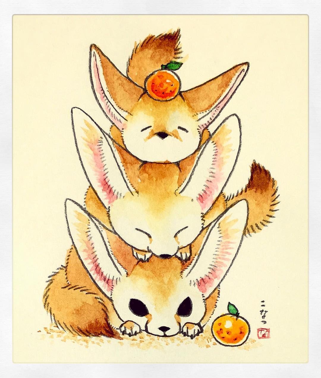 鏡フェネック かわいいイラスト イラスト 可愛い 動物