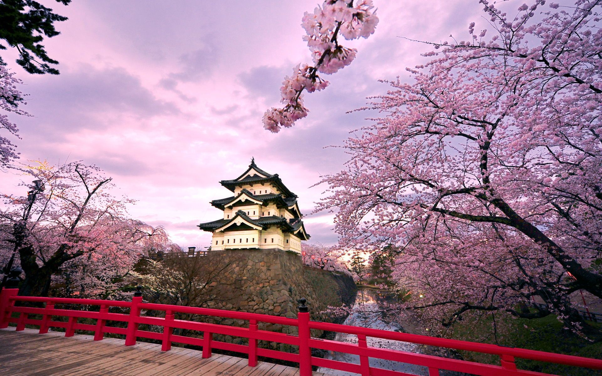 Nature Beautiful Scenery Widescreen High Definition Desktop Wallpaper Background Picture Free Jpg 1920 1200 Hirosaki Japanese Castle Japan Travel