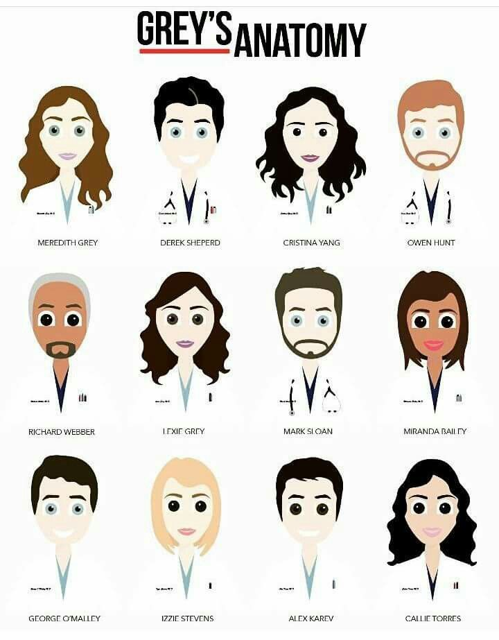 Fancy Epguides Greys Anatomy Composition - Anatomy And Physiology ...