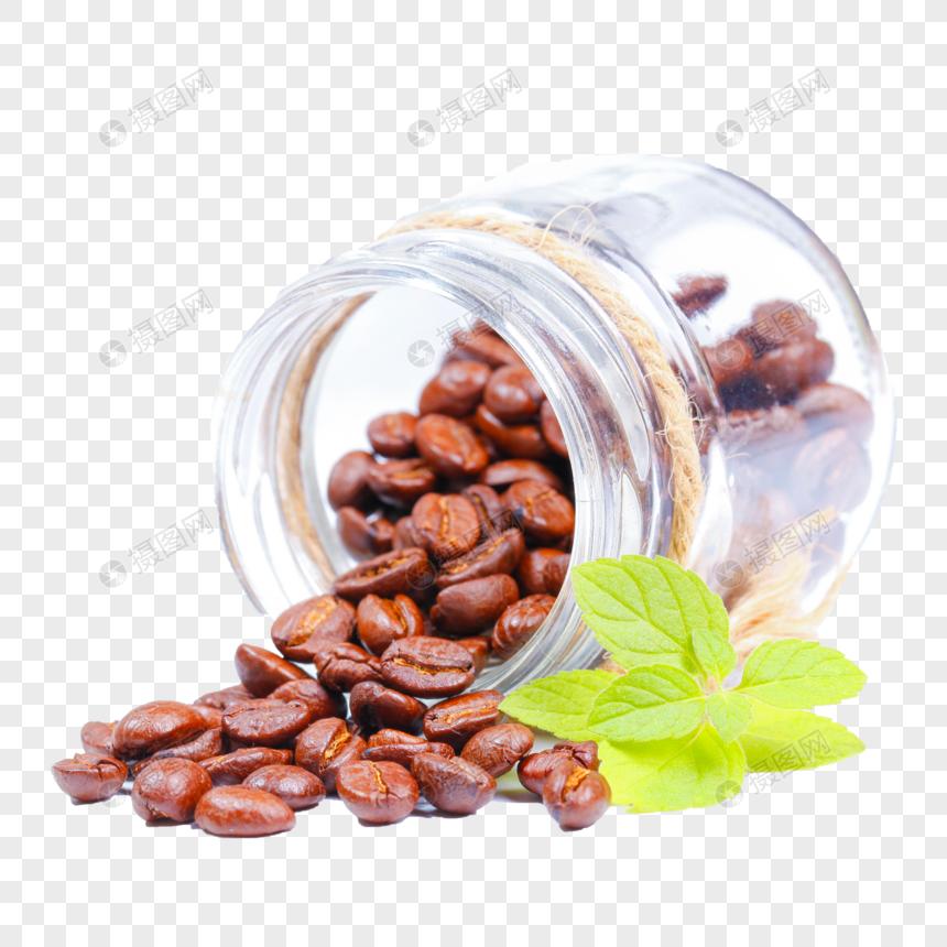 Coffee Bean Cafe Botanical Illustration Arabica Coffee Png Clipart Arabica Coffee Basil Beans Botanical Illustrat Coffee Png Coffee Bean Logo Coffee Beans