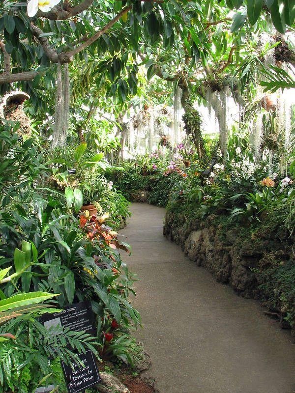indoor gardens - Google Search