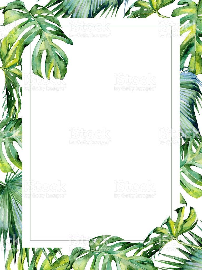 Watercolor illustration of tropical leaves, dense jungle