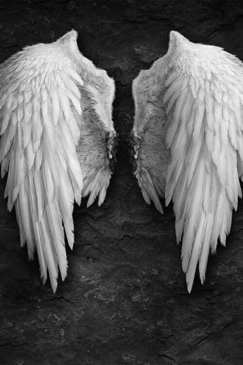Pin von Steffi Degenhardt auf Flügel - auch der Teufel war ...