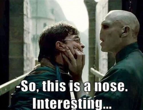 Just Snorted Protein Shake Out Of My Nose I Laughed So Hard Harry Potter Memes Hilarious Harry Potter Funny Harry Potter Jokes