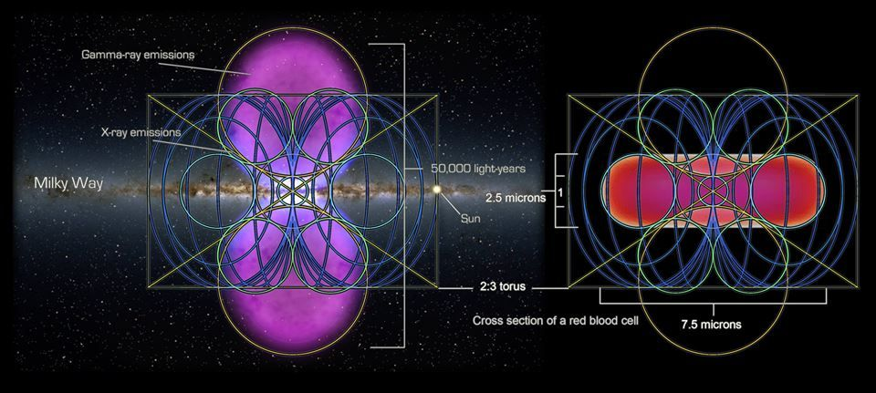 Image result for milky way galaxy vs red blood cell