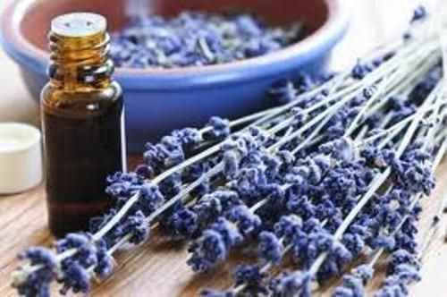 lavender essential oil: Lavender and peppermint oil mixed with a carrier oil such as Jojoba will cure headaches when rubbed on the temples.