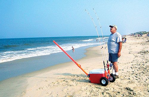 17 best images about bait launcher on pinterest | the surf, Hard Baits