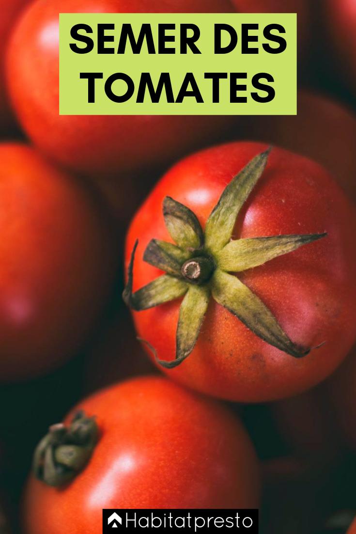 Potager : quand semer et quand planter les tomates ? | Quand planter les tomates, Parterre de ...