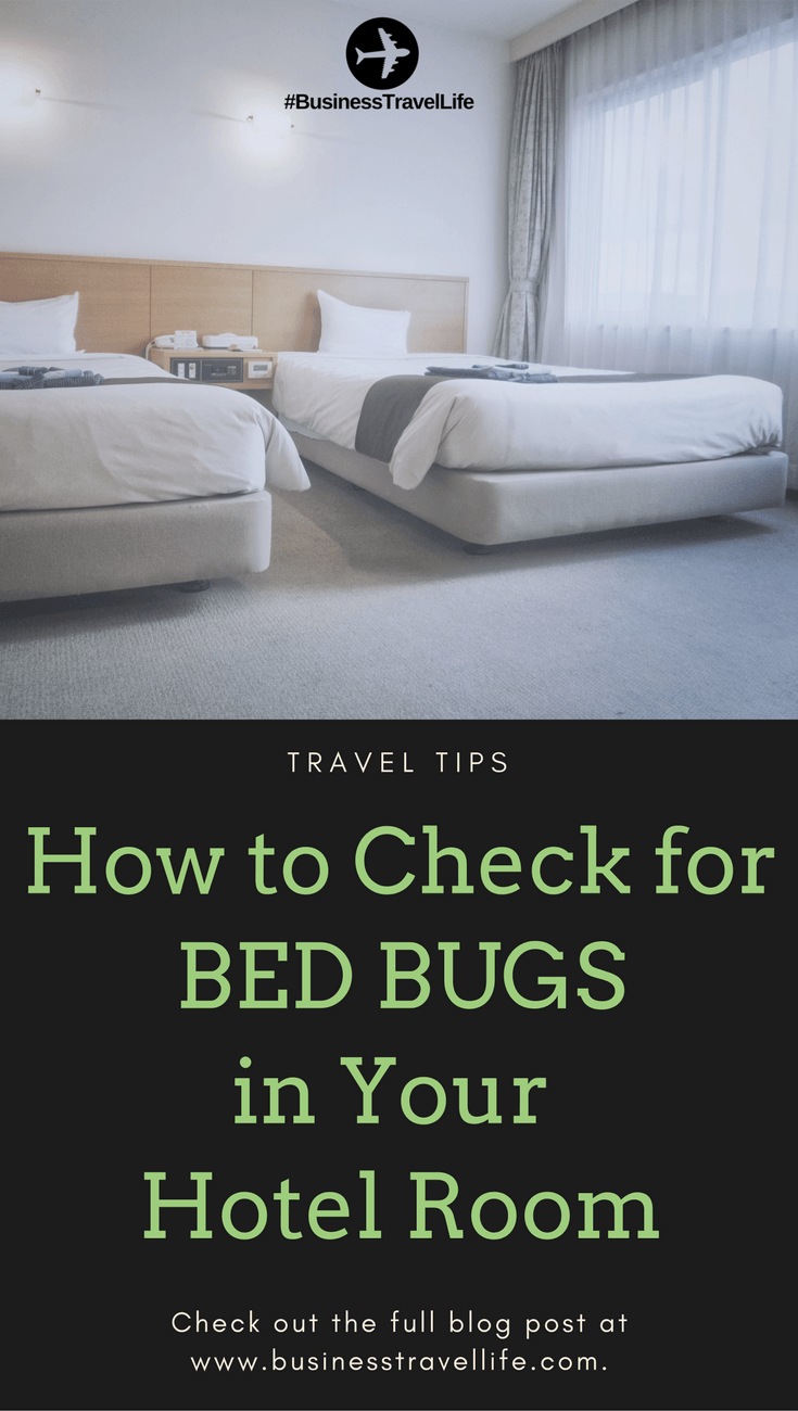 How To Check For Bed Bugs In Your Hotel Room Bed Bugs Treatment