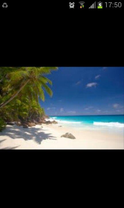 Go to Seychelles