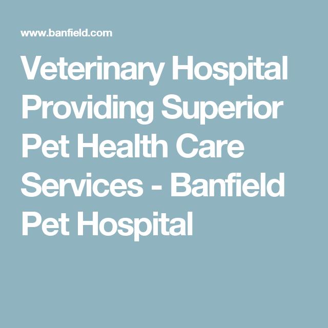 Veterinary Hospital Providing Superior Pet Health Care Services Banfield Pet Hospital Pet Health Care Health Care Services Pet Health