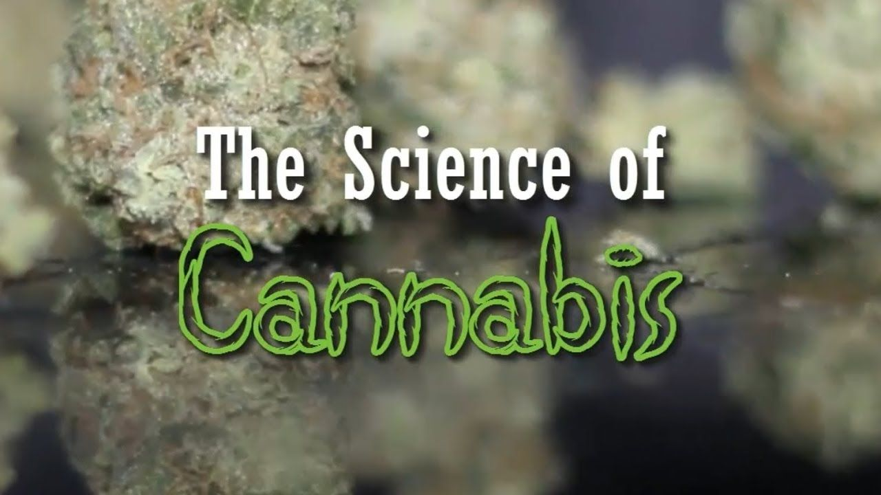 Clearing The Smoke: THE SCIENCE OF CANNABIS - Science Documentary