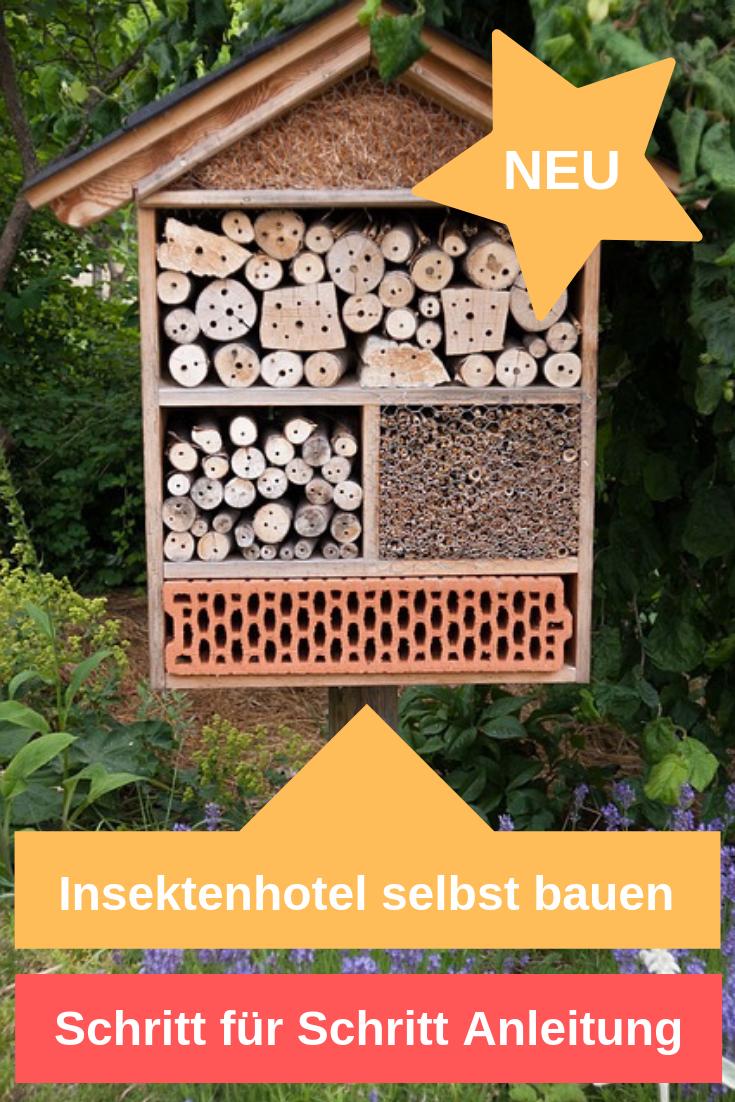 Insektenhotel Selbst Bauen Schritt Fur Schritt Anleitung