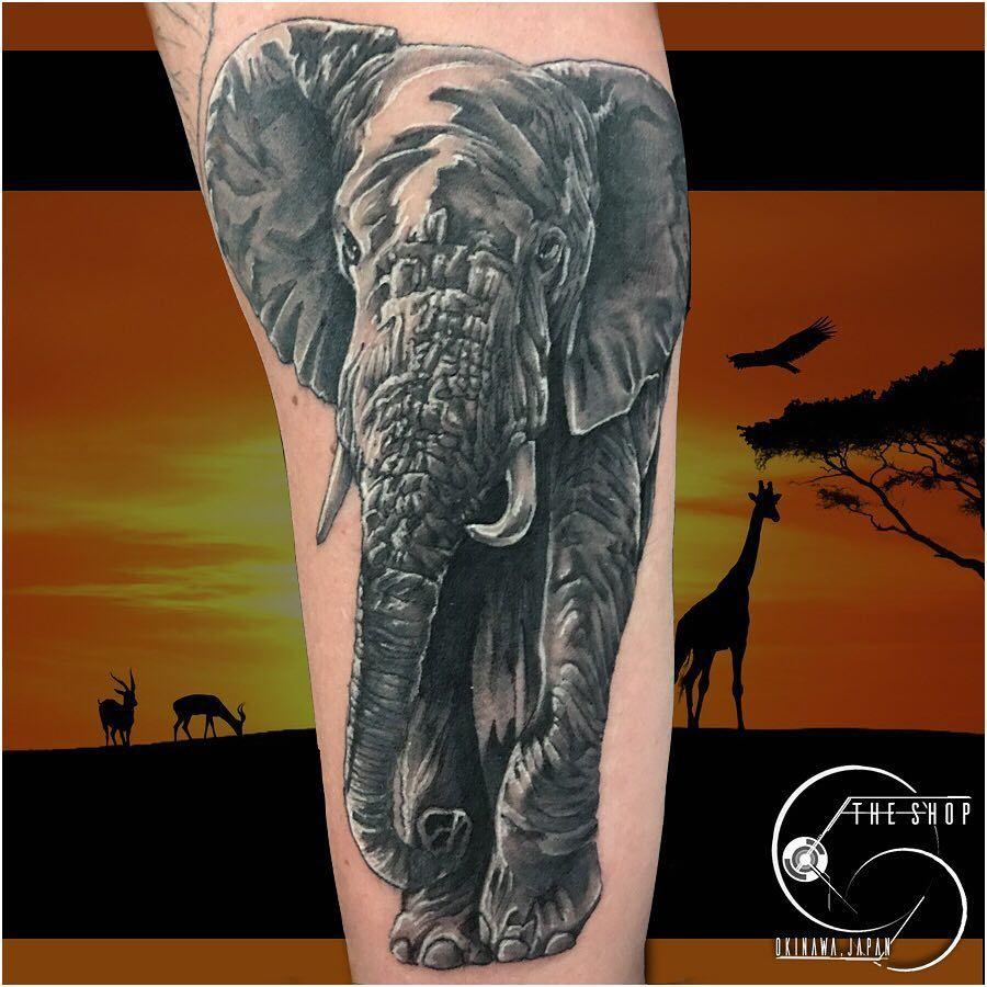 Mana mana_tattooist got to do this realistic elephant