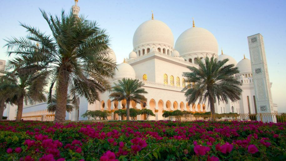 Grand Mosque Sheikh Zayed Palms Garden With Purple Flowers Abu Dhabi United Arab Emirates Hd Wallpaper 1920 1200 Grand Mosque Mosque Palm Garden