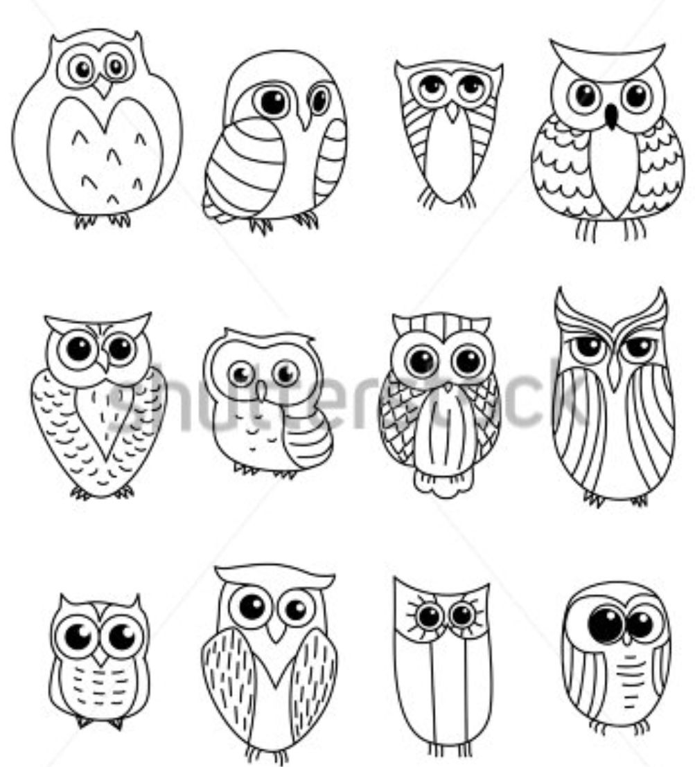 Pin de Bea Antrim en Owls | Pinterest