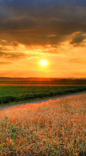 Nature Wallpapers, Nature Landscape Sunset desktop hd
