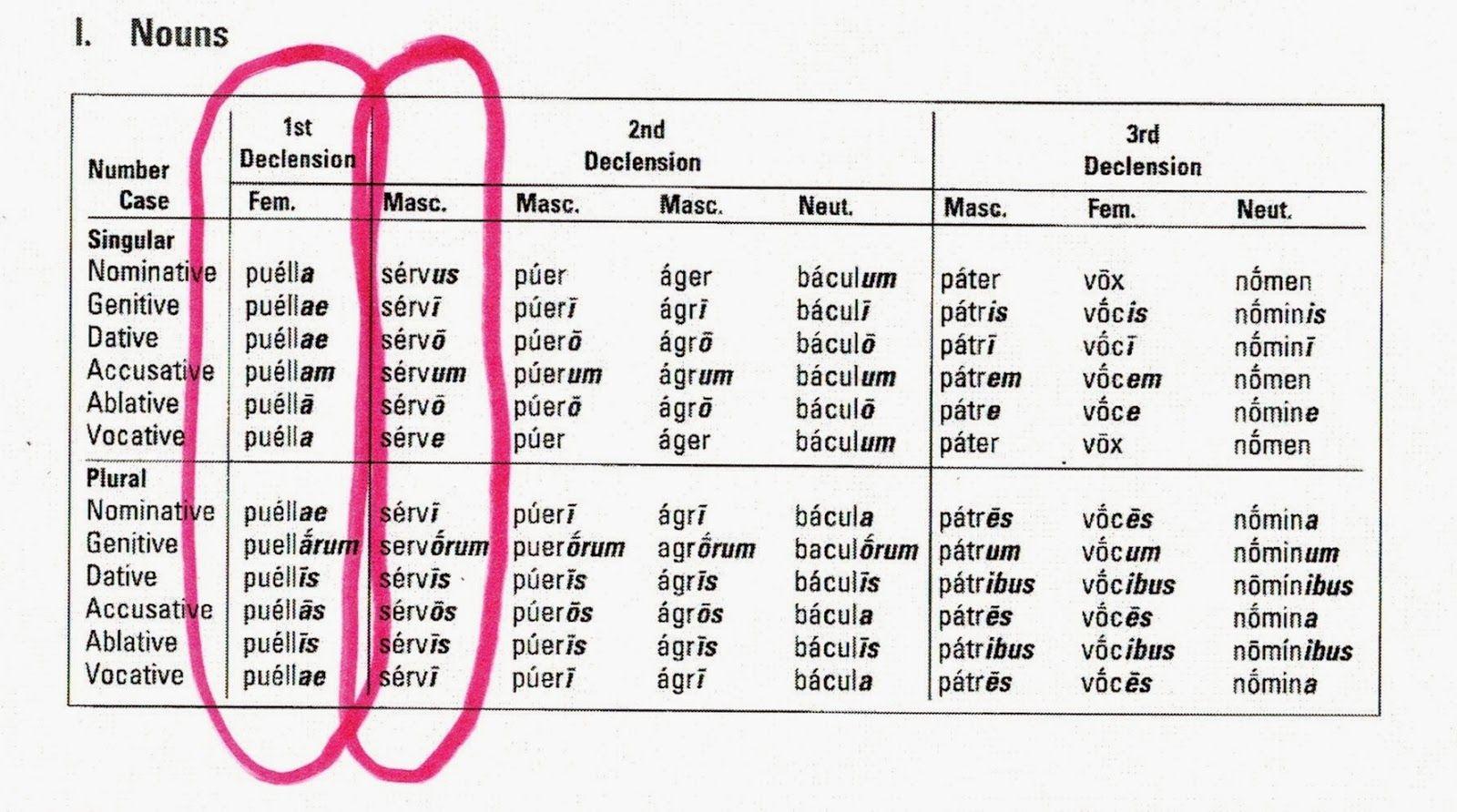 Latin Verb Conjugation Chart