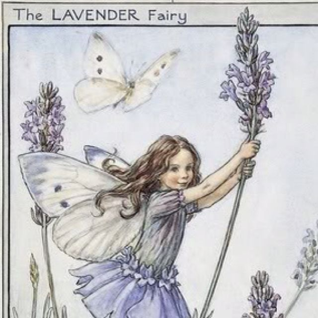 Lavender Fairy Flower Fairies Cicely Mary Barker Fairy Book