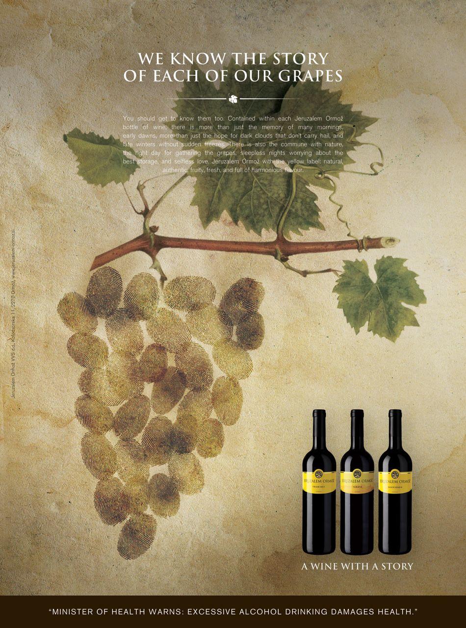 Jeruzalem Ormož Winery (Slovenia) - A wine with a story