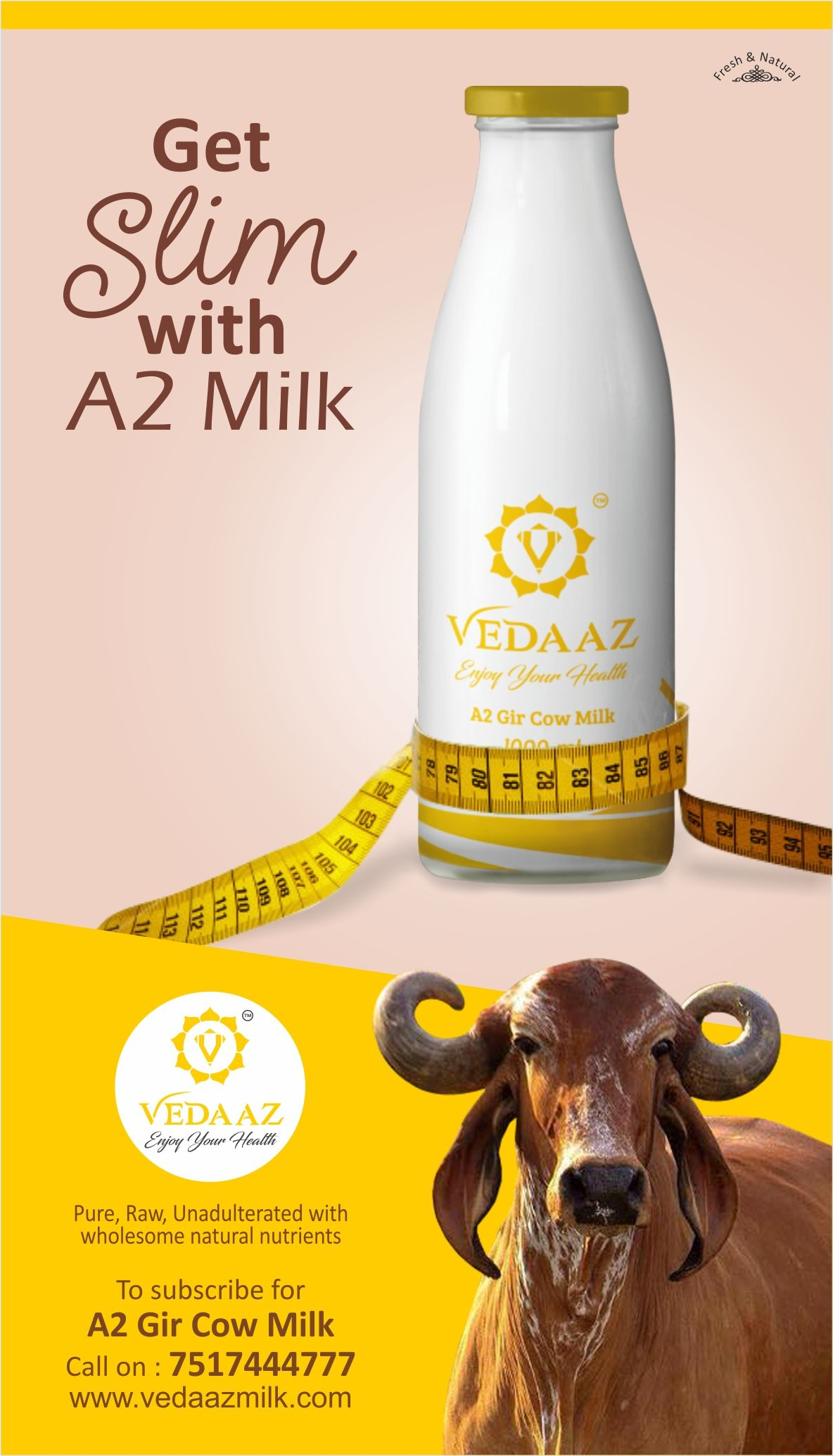 A2 Milk Can Help You Reduce Your Waistline Naturally So Make A2