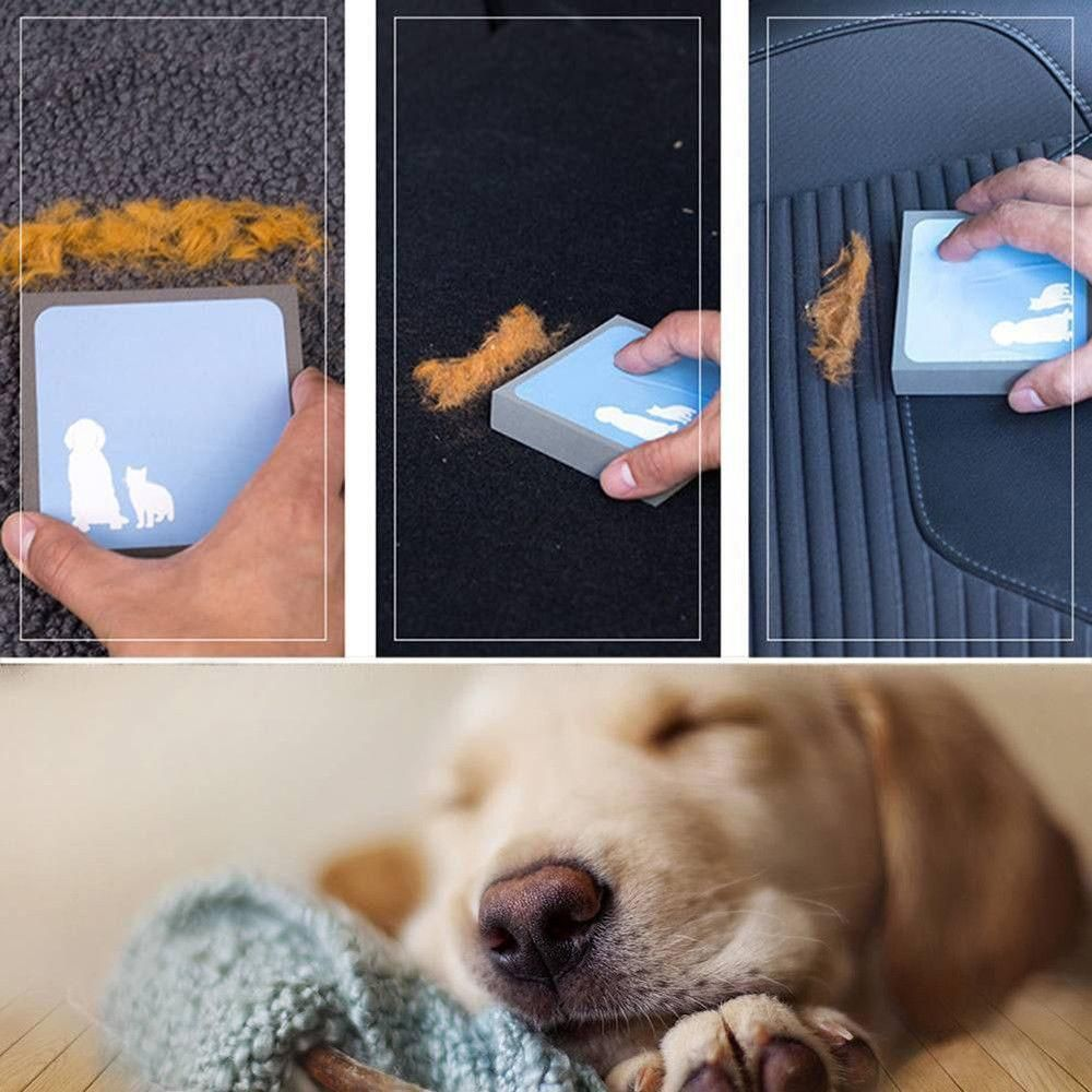 Magic Pet Hair Lifter Sponge Cleaning Hacks Deep Cleaning Tips Cleaning Painted Walls