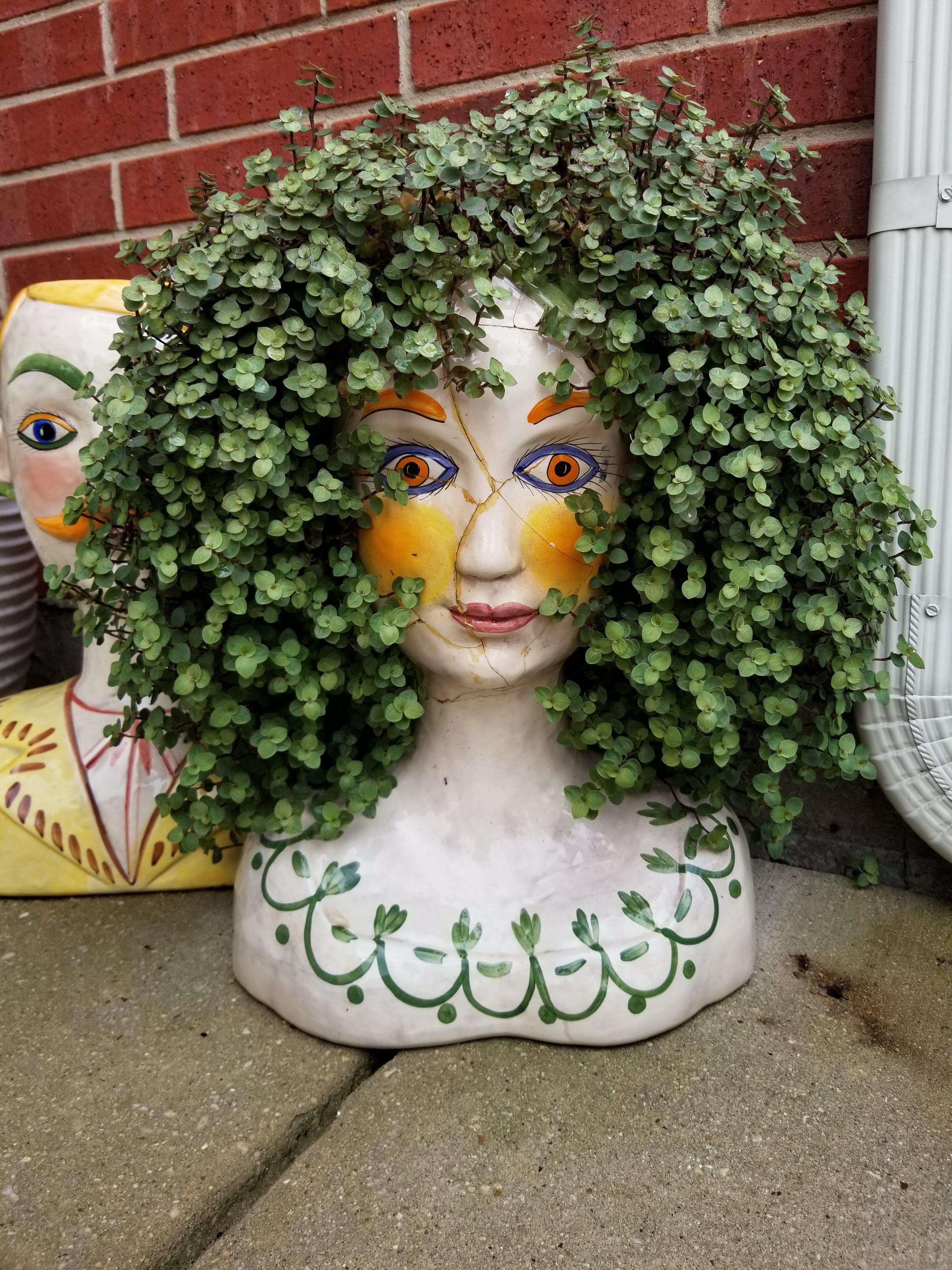 Too cool!! Wish I had this planter!