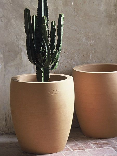 terracotta garden pot cactus cac 15 poterie ravel. Black Bedroom Furniture Sets. Home Design Ideas